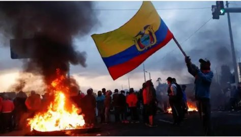 Ecuador_Myca_2.jpg